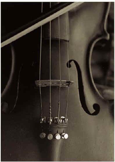 لمحة عن منتدى صدى سوريا Violin92
